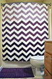 """DII Oceanique Shower Curtain 100% Polyester, Machine Washable, for Everyday Use, Kids, Teens, Extra Bathroom, Main Bathroom 72x72"""" , Eggplant Ombre Chevron"""
