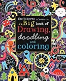 img - for Big Book of Drawing, Doodling and Coloring (Doodle Books (Usborne Books)) book / textbook / text book