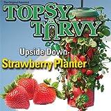 Allstar Marketing Topsy Turvy Strawberry Planter TT091112