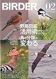 BIRDER (バーダー) 2013年 02月号 野鳥図鑑活用術/鳥の分類が変わる