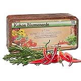 12 x 600 Gramm Kokoserde Humusziegel - torffreie Blumenerde -