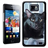 Fancy A Snuggle Black Bombay Cat Design Hard Case Clip On Back Cover for Samsung Galaxy S2 i9100