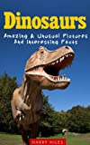 img - for Dinosaurs: Amazing & Unusual Pictures And Interesting Facts book / textbook / text book