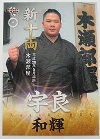 BBM2016大相撲カード「彩」■レギュラーカード■No.81/宇良和輝/新十両