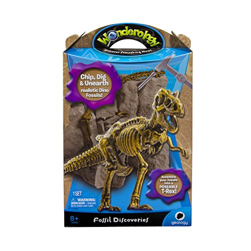 Wonderology - Science Kit - Fossil Discoveries