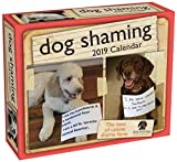 Dog Shaming 2019 Day-to-Day Calendar