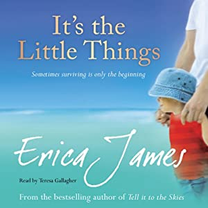 It's The Little Things Audiobook