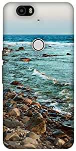 The Racoon Lean Rocky Shore Beige hard plastic printed back case / cover for Huawei Nexus 6P