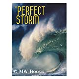 The Perfect Storm / Valeria Mnferto de Dabianis [project editor] ; Ornella D'Alessio [text]