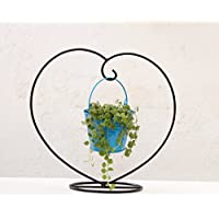 Green Gardenia Iron Heart Table Top Stand With Metal Bucket-Light Blue
