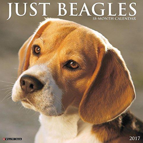 Beagles 2017 Wall Calendar