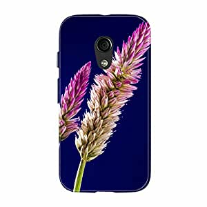 Fusion Gear Flowers Case for Moto G (2nd Gen)