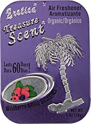 Exotica Treasure Scent Wildberry Air Fresheners - 28 g