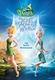 Disney Fairies: Tinker Bell:  The Secret of the Wings: The Junior Novelization (Disney Junior Novel (ebook))