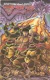 img - for Teenage Mutant Ninja Turtles #18 Vol. 1 Feb. 1989 book / textbook / text book