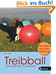 Treibball: Vom Spiel zum Turniersport