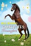 Charlottes Traumpferd, Band 3: Charlottes Traumpferd, Ein unerwarteter Besucher