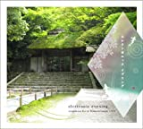 electronic evening ryoondo-tea live at Honen-in temple