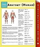 Anatomy (Human) (Speedy Study Guides)