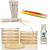 Amazing Bacteria Science Kit - Prepoured Agar Plates and Swabs Science Kit - Top Science Fair Project Kit - Nutrient Rich Agar for More Bacteria Growth - Includes Simple Instructions and Experiment Ebook - Have Fun While Learning Microbiology Now!