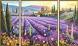 Schipper 609260604 - Malen nach Zahlen - Lavendelfelder (Triptychon) 50x80cm hergestellt von Noris