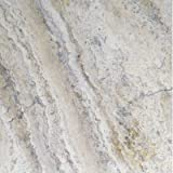 """12"""" x 12"""" Honed And Filled Travertine Tile"""