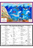 Ocean Explorer Activity Placemat by Tot Talk
