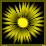 Divine Daisies Yellow 02 Paper-Medium ( 30 In X 30 In )