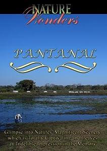 Nature Wonders  PANTANAL  Arcadia Films