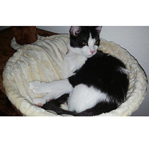 Songmics-Nido-para-rascadores-Accesorio-para-rbol-de-gatos-Marco-metlico-Forrado-de-franela-Extra-profundo-colores-y-medidas-opcionales