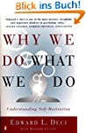 Why We Do What We Do: Understanding S...