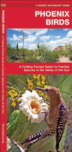 Phoenix Birds: A Folding Pocket Guide To Familiar Species In The Valley Of The Sun (Pocket Naturalist Guide Series)
