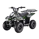 by MOUNTOPZ (70)Buy new:  $800.00  $569.00 2 used & new from $544.51