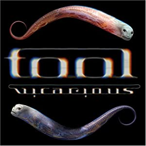 Tool: Vicarious