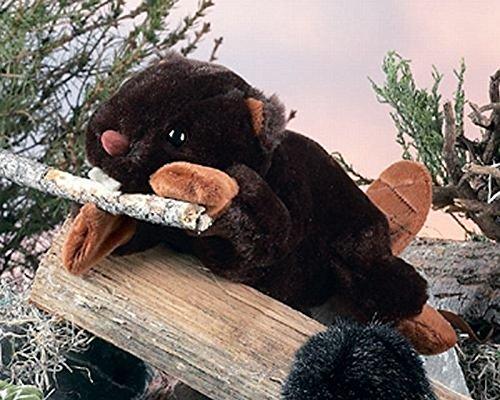 "Woody Beaver - 8"" - 1"