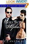 Bad Boy Alphas: Bad Boys of BDSM
