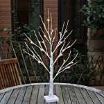 EAMBRITE 2FT 24LT Warm White LED Battery 