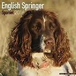 English Springer Spaniel Calendar 201...
