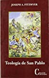 Teologia de San Pablo/ Theology of Saint Paul (Spanish Edition) (8470575384) by Fitzmyer, Joseph A.