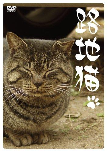 路地猫 [DVD]