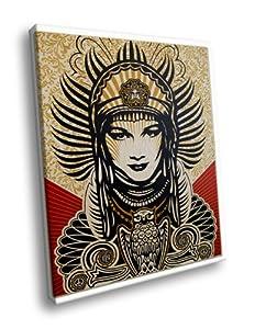 H5D8184 Shepard Fairey Peace Goddess Art 20x16 FRAMED CANVAS PRINT