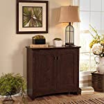 Buena Vista 2 Door Small Storage Cabinet