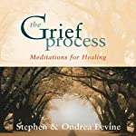 The Grief Process: Meditations for Healing |  Stephen,Ondrea Levine