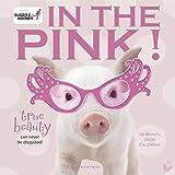 In the Pink! SGK 2016 Wall Calendar