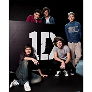 One Direction 14x17/24x30 Artists ArtPrint Poster 033C from CCEE