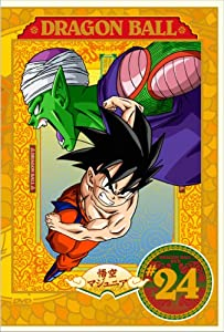 Dragon Ball #24