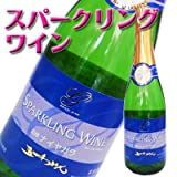 五一わいん スパークリングワイン ナイヤガラ 【白・やや甘口】 720ml