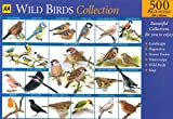 Wild-Birds-Collection-2-AA-Jigsaw-Collection
