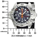 Citizen Men's BJ2000-09E Eco-Drive Aqualand Stainless Steel Black Rubber Dive Watch