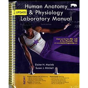 human anatomy   physiology laboratory manual  fetal pig human anatomy laboratory manual with cat dissections 7th edition answer key human anatomy laboratory manual 5th edition
